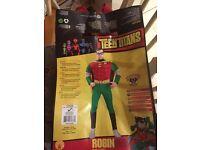 Mens Batman Robin costume