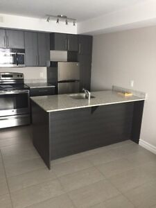 Furnished Bachelor Lease Takeover - $725