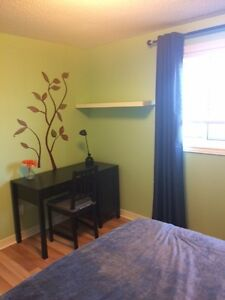 Renovated home, newly furnished room for rent, close to UW/WLU Kitchener / Waterloo Kitchener Area image 3