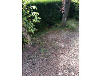 Small yard wanted rent Glasgow