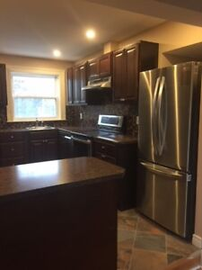 One bedroom plus den on Tower Road (newly renovated!)