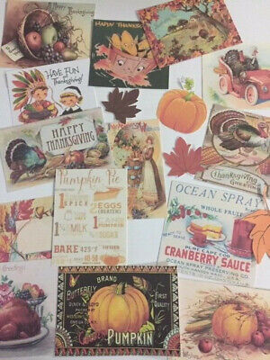 Vintage Thanksgiving CARDS DIE CUTS Gift Tags 14+ Piece for Crafting, & More! ()
