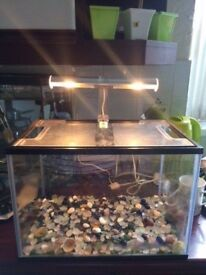 Small fish tank with light and gravel
