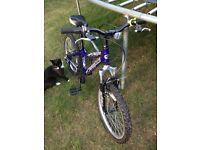 Dawes Lightning 20 inch boys bike