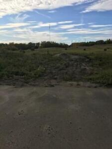 Rural Leduc County,  Land for Sale - 4.27