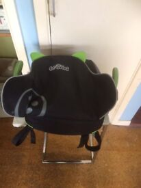 Trunkie car seat and carry bag, all in one