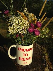 Donald K Trump merchandise marketing opportunity - looking for
