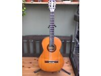 Congress classical guitar,Made in Japan early 70's