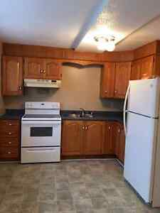 Clarenville - centrally  located - clean, bright, spacious