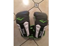 Everlast 14 oz gloves