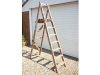Step Ladder Hardwood 7ft
