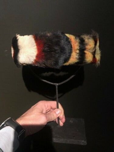 Antique Jivaro feather Headdress, crown, toucan, headhunters, Amazone Indians
