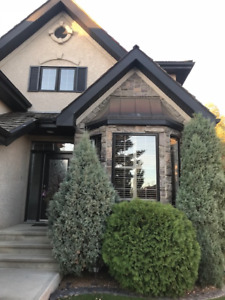 Properties of Donsdale - Two Storey