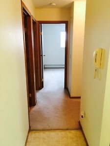 GREAT 2 Bdrm Suite - ONLY $1189.00 - Pet Friendly in Lakewood!