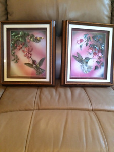 Framed pictures under Glass '' HUMMINGBIRDS''-