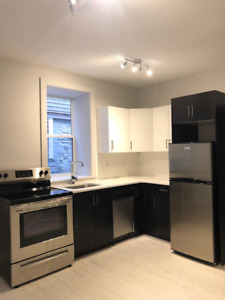Brand New Beautiful 1 Bedroom