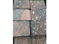 250 BRICK PAVERS FOR SALE
