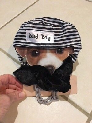 NEW! BAD DOG Prisoner PET COSTUME OS Puppy Clothes HALLOWEEN Criminal - Prisoner Halloween Costumes For Dogs