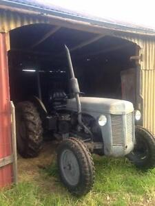 Working Little Grey Fergie Tractor Longford Wellington Area Preview