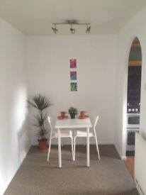 Super Studio Flat Separate Sleeping Area & Kitchen
