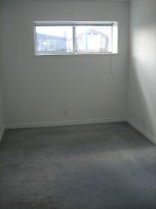 2 Bedrooms Basement Suite available Jan 5
