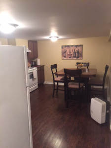 Clean and spacious basement apt, St John's. Great location!
