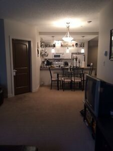 One Bedroom in Shared Condo for rent