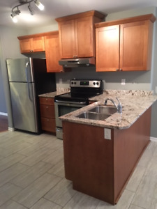 Large 2 Bedroom Executive Condo for Rent
