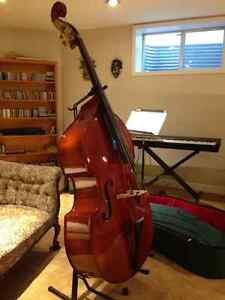 Double Bass in perfect condition