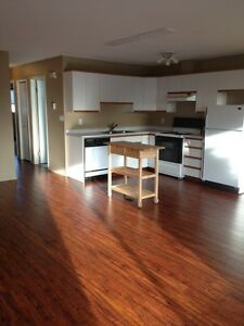 GORGEOUS 2 BEDROOM DUPLEX SUITE IN DEVON!!