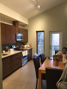 URGENT: Sublet in Modern House on DAL Campus