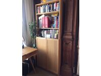IKEA Billy Olsbo Book Shelf With Door In Oak