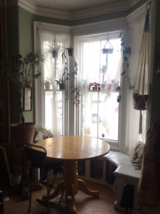 Charming bachelor apartment overlooking the Halifax Commons