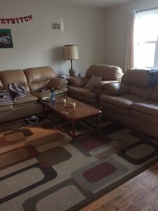 1 room for student rental in Old North area London Ontario image 1
