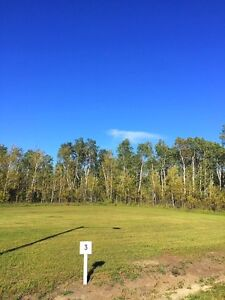 RV/Residential Serviced Lakeview lots - Starting at $29,999 Regina Regina Area image 6