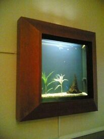 Wall Fish Tank for sale!