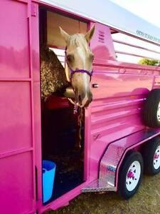 Horse Float Hire Logan Village Logan Area Preview