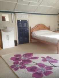 Large well appointed bed/sit in shared flat. Suit post-grad, mature student, young professional.