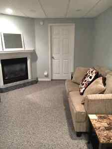 AVAILABLE JANUARY 1 2017!- Lower Level of house Windsor Region Ontario image 5