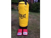Everlast 3ft heavy punch bag with gloves
