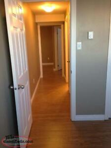*rented* 2 Bedroom apartment Airport Heights St. John's Newfoundland image 8