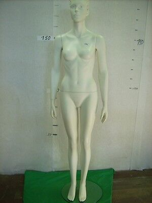 Mannequin Mannequin Doll Fashion Doll Female 3564 Doll Woman