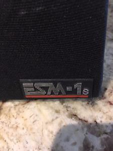 ESM-1s Speakers (Energy) in Good Condition