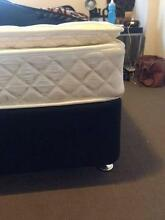 Queen Bed with Leg Base ($300) - 11 month old Woollahra Eastern Suburbs Preview