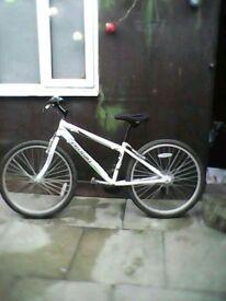 Probike adult mountain bike. Small-medium