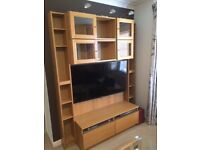 TV storage and display unit (wall sized)