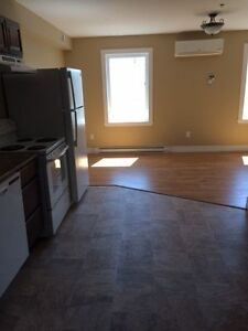 Charming bachelor in new building! $650