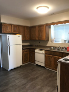 NEWLY RENOVATED 2 BEDROOM IN NORTH BURNABY