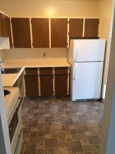 1 BR Apartment Downtown! Gym & Party Room!! MARCH 1ST