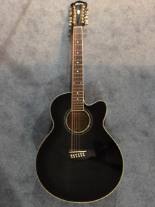 Guitar - Ibanez 12 String Acoustic-Electric with Hard Case